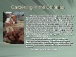 gardening in the colonies8