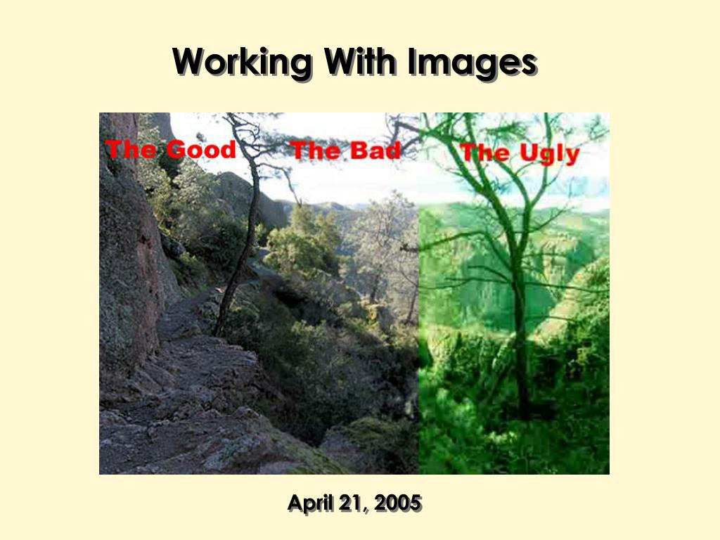Working With Images