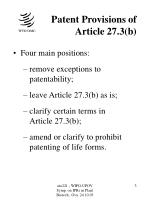 patent provisions of article 27 3 b