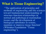 what is tissue engineering