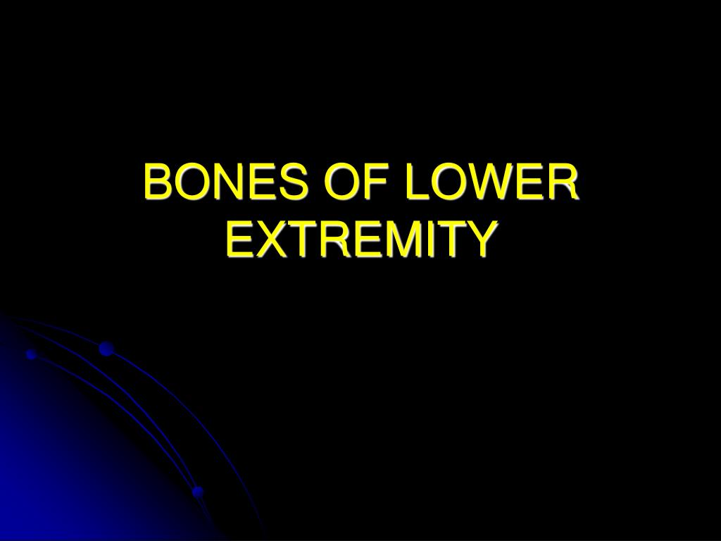 bones of lower extremity l.