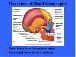 overview of skull geography