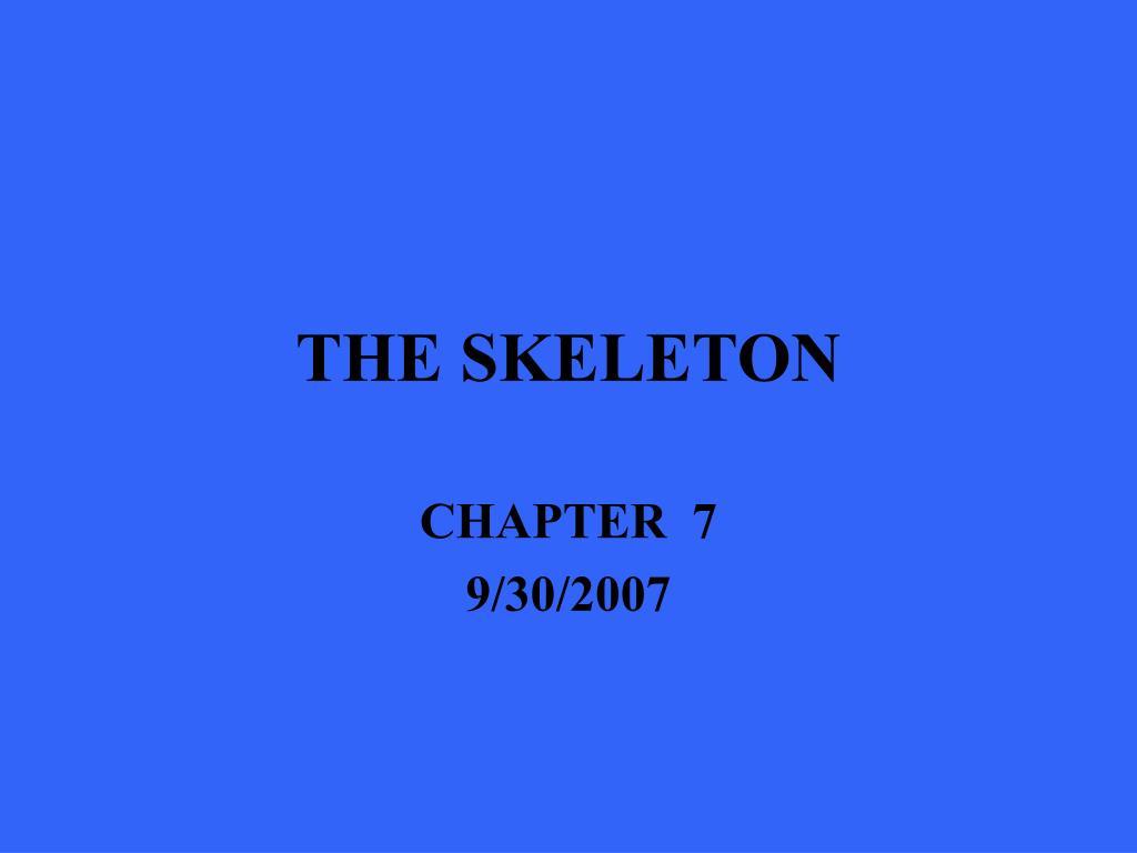 the skeleton l.