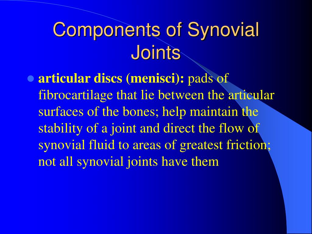 Components of Synovial Joints