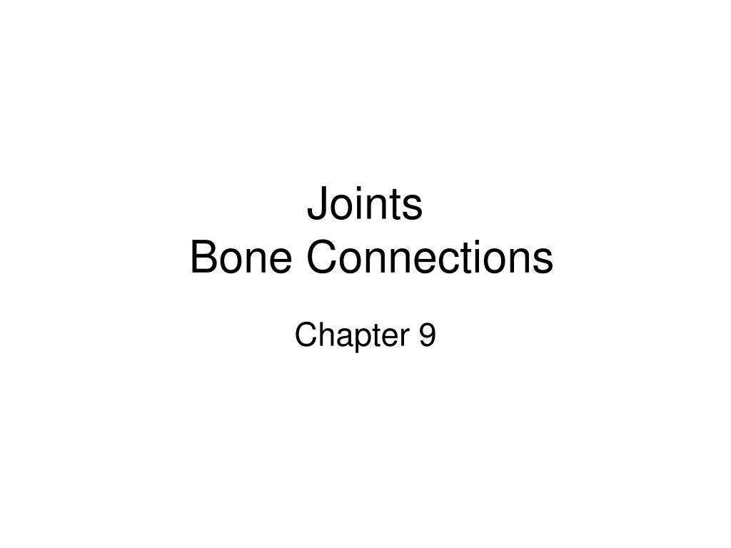 joints bone connections l.