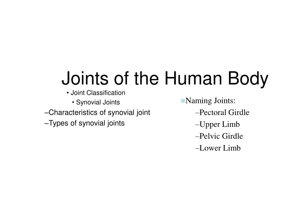 joint classification synovial joints characteristics of synovial joint types of synovial joints l.