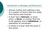 introduction to myology and movement