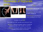 movements of foot ankle joints