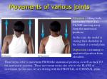 movements of various joints28