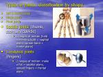 types of joints classification by shape20