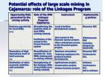 potential effects of large scale mining in cajamarca role of the linkages program