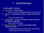 1 synarthoroses