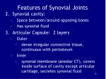 features of synovial joints15