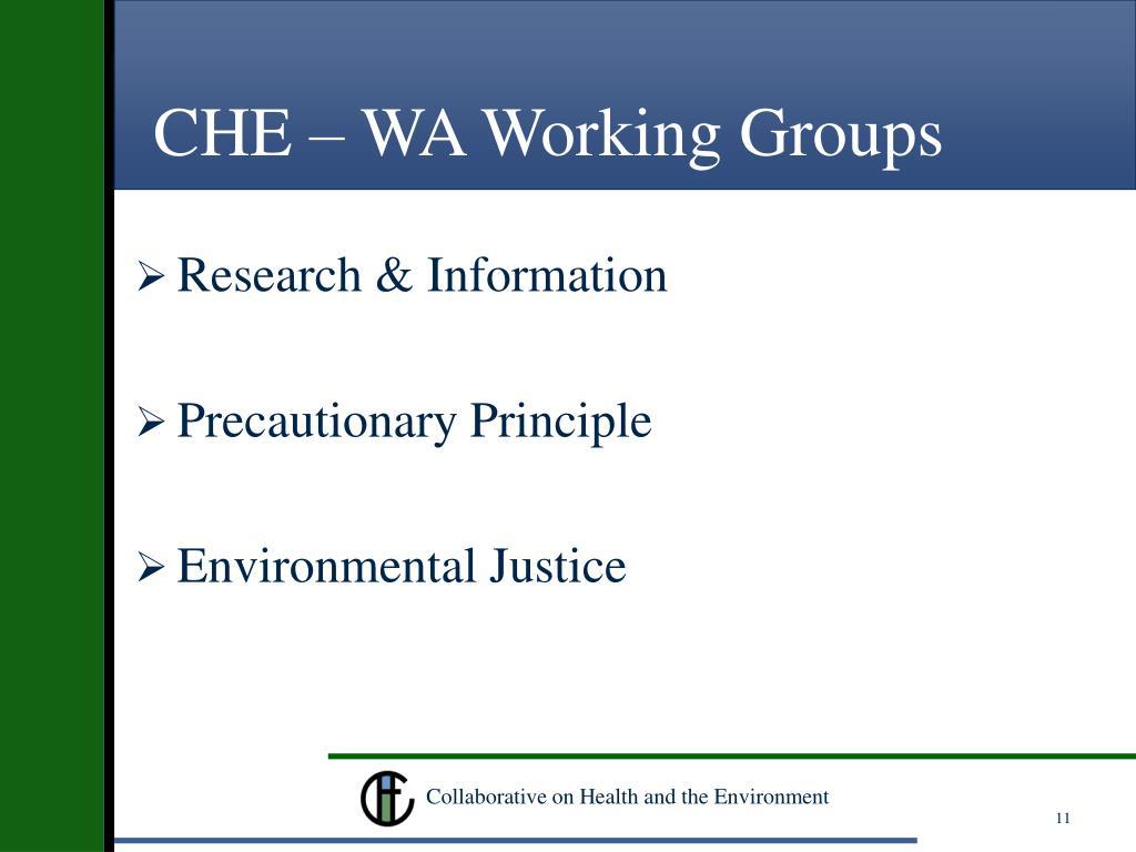 CHE – WA Working Groups