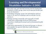 learning and developmental disabilities initiative lddi