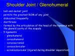 shoulder joint glenohumeral