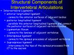 structural components of intervertebral articulations40