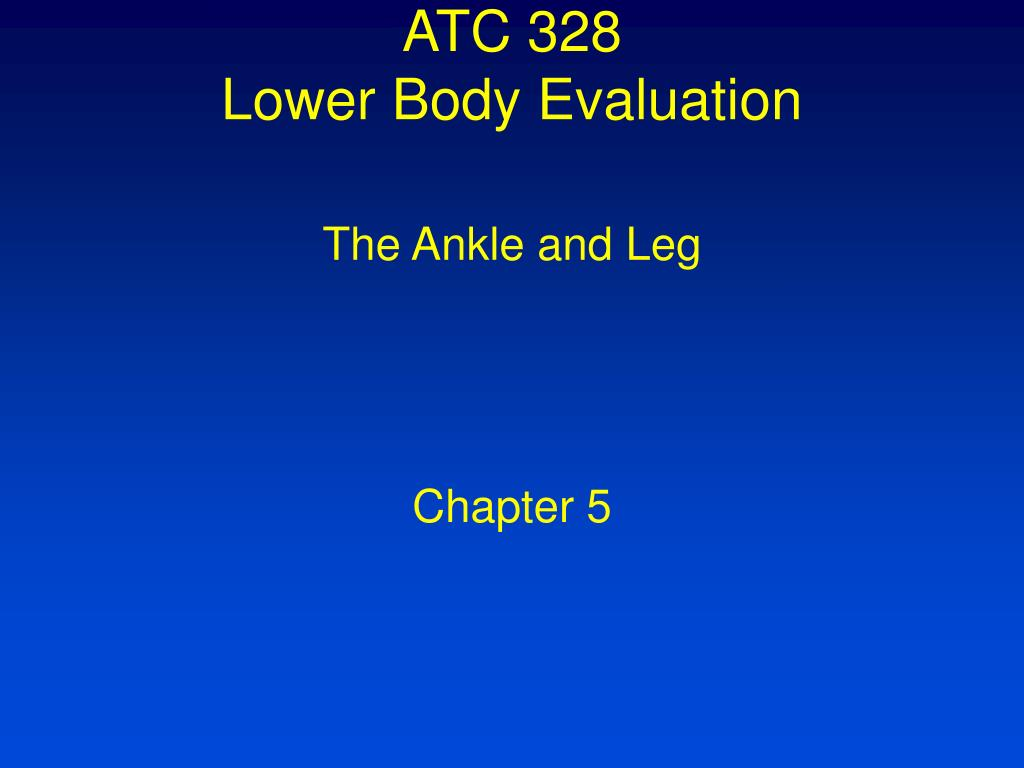 atc 328 lower body evaluation l.