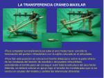 la transferencia cr neo maxilar7