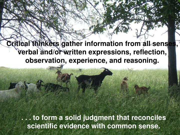 Critical thinkers gather information from all senses, verbal and/or written expressions, reflection,...