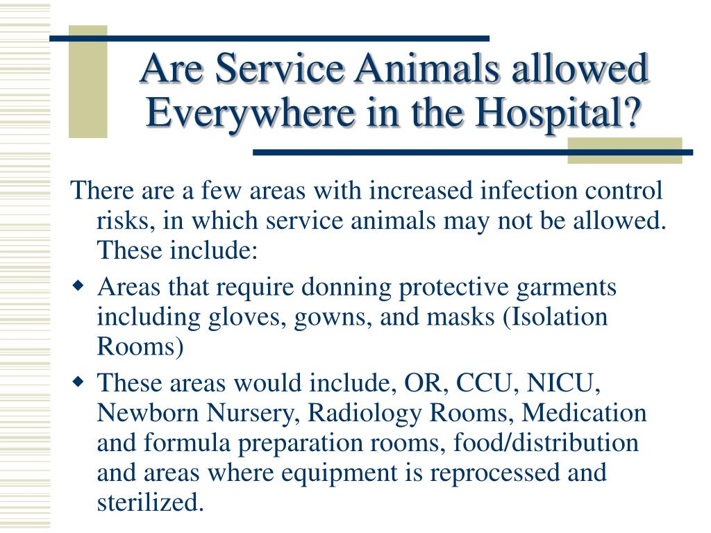Are Service Animals allowed Everywhere in the Hospital?