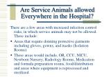 are service animals allowed everywhere in the hospital