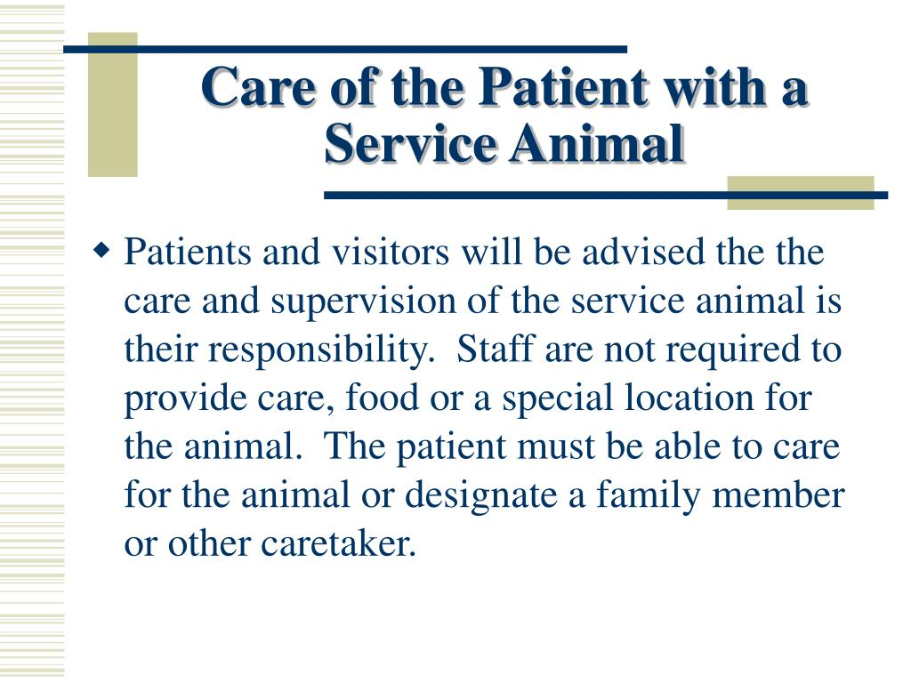 Care of the Patient with a Service Animal