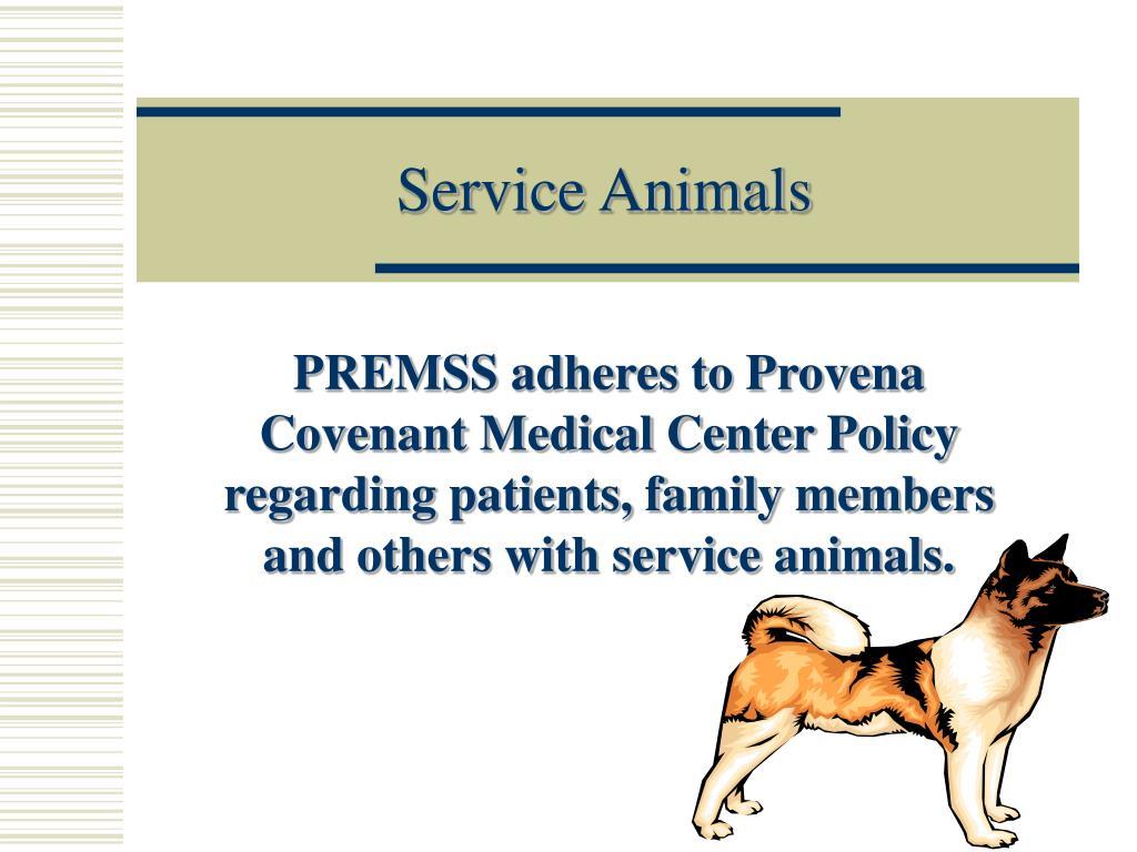 service animals l.