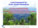 land component for arctic system reanalysis