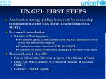 ungei first steps