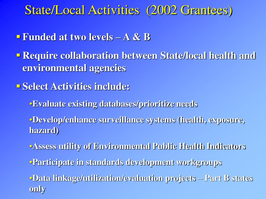 State/Local Activities  (2002 Grantees)