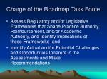 charge of the roadmap task force17