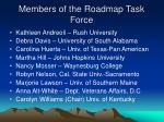 members of the roadmap task force