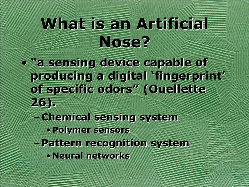 What is an Artificial Nose?