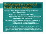 employment in a cohort of breast cancer patients12