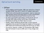 optical burst switching11