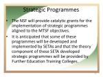 strategic programmes