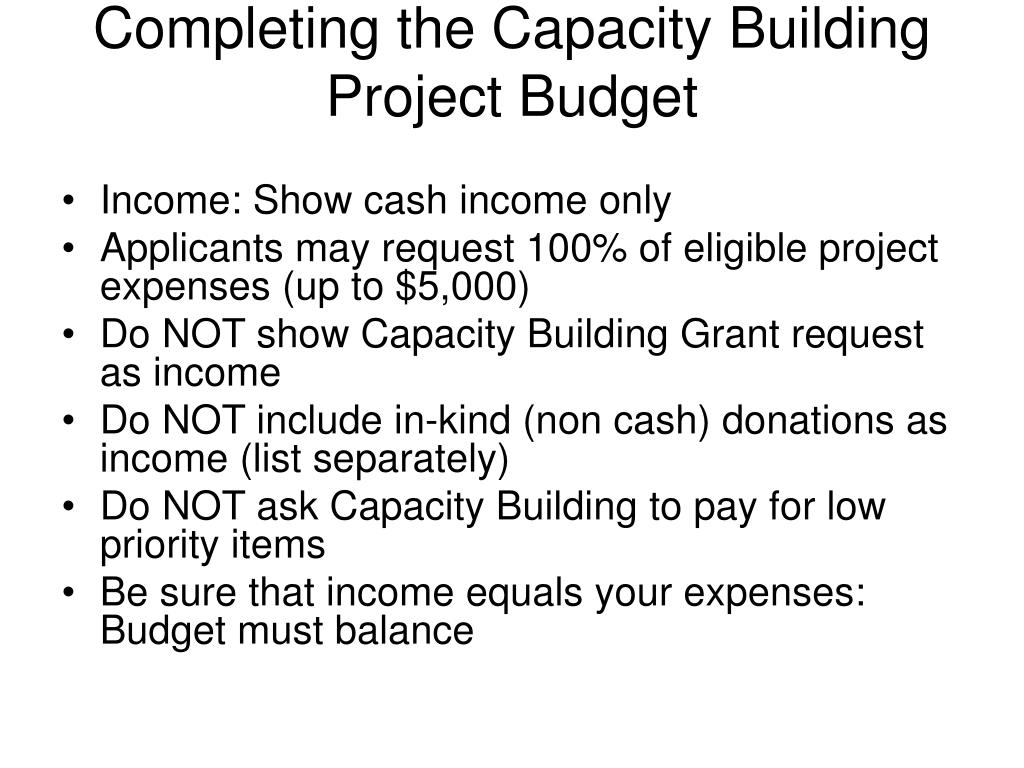 Completing the Capacity Building Project Budget
