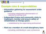 example roles responsibilities