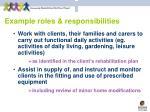 example roles responsibilities19