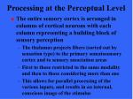 processing at the perceptual level17