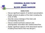 cerebral blood flow and blood brain barrier