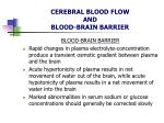 cerebral blood flow and blood brain barrier12