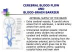 cerebral blood flow and blood brain barrier4