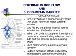 cerebral blood flow and blood brain barrier5
