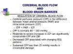 cerebral blood flow and blood brain barrier7