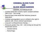 cerebral blood flow and blood brain barrier8