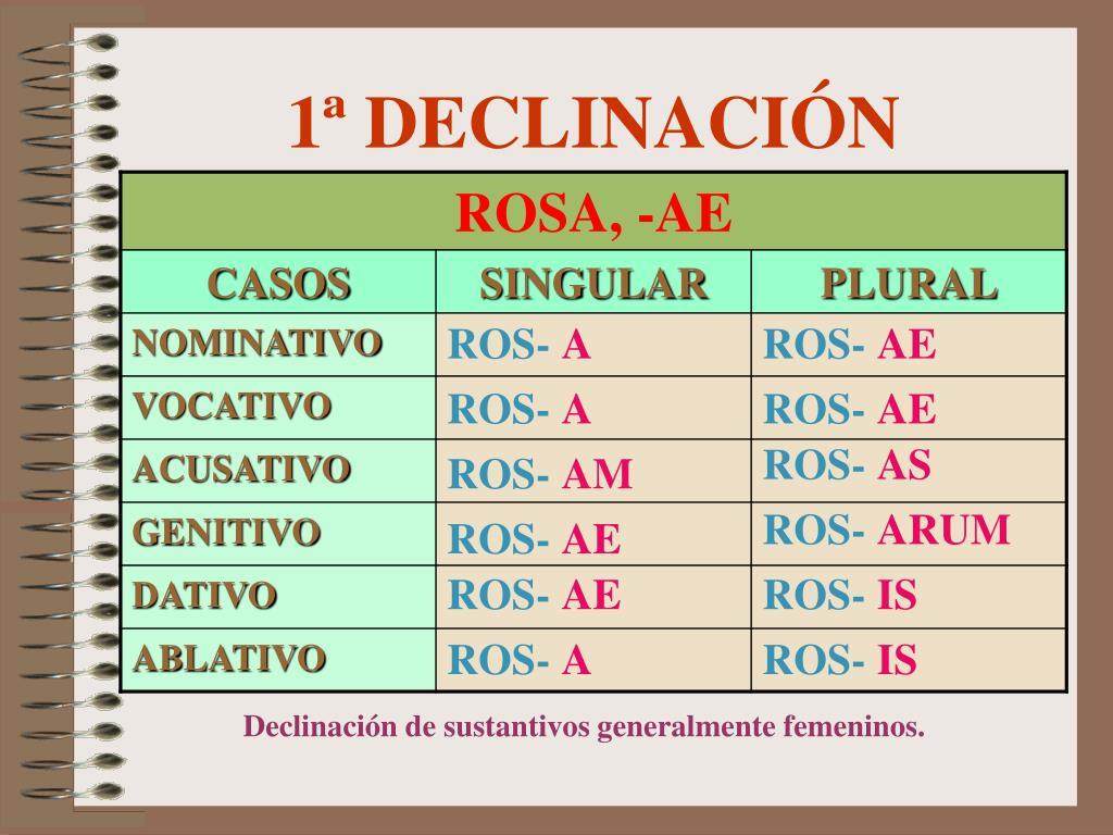 1 declinaci n l.