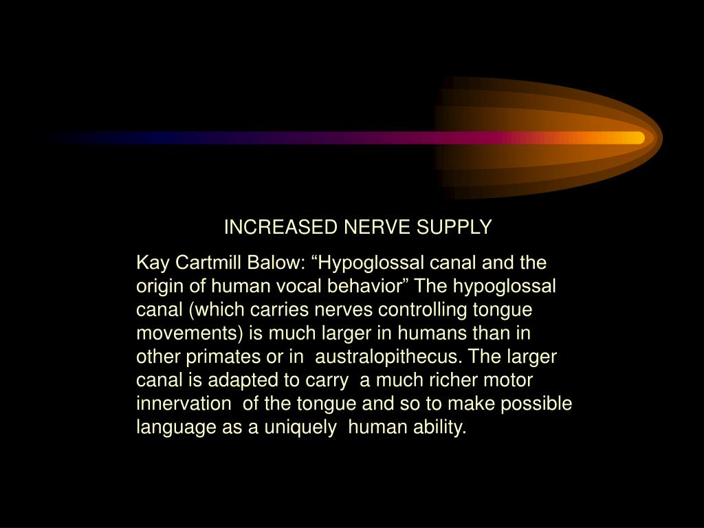 INCREASED NERVE SUPPLY