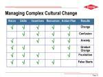 managing complex cultural change